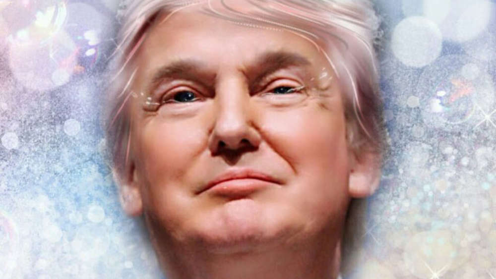 791078339-meitu-donald-trump-daten-mo7p0qbcing1